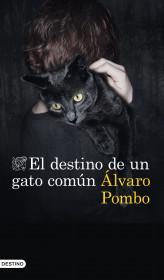 El destino de un gato común